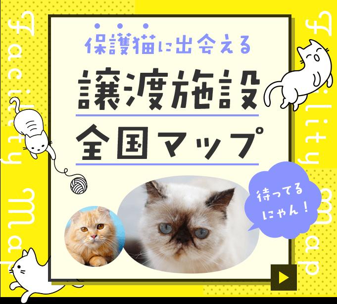 保護猫に出会える 譲渡施設全国マップ