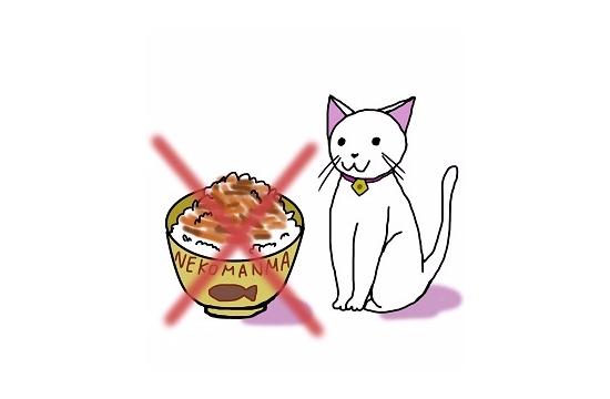 猫に必要な栄養素09270