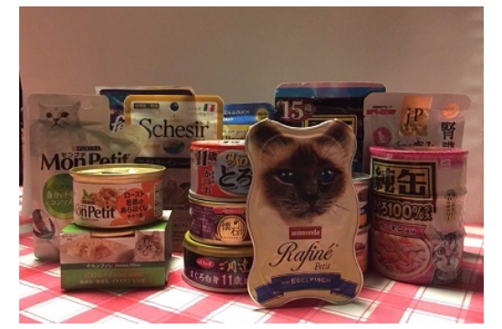 猫に必要な栄養素09272