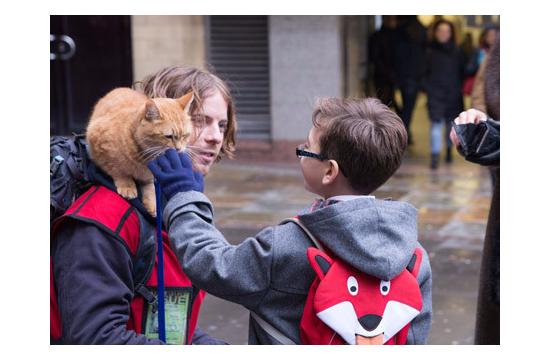 世界一有名な肩乗り猫10032