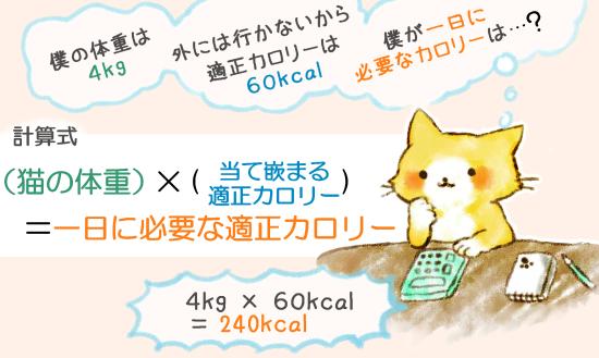 ネコの適切なご飯の量102534