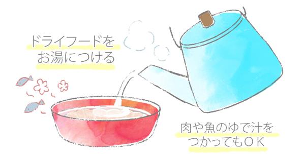 ドライフードをお湯でふやかしているイラスト