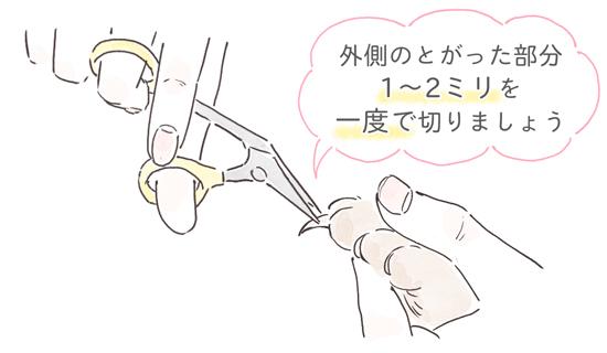 猫の爪の切り方
