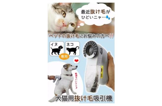 猫プレゼント96745