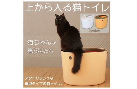 猫プレゼント96747
