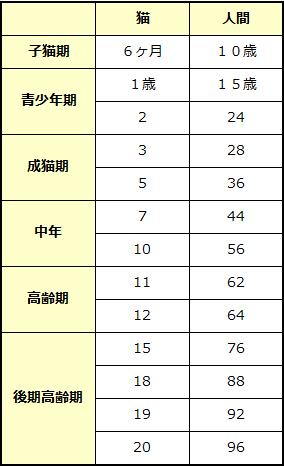 猫と人間の年齢の対比とライフステージ表
