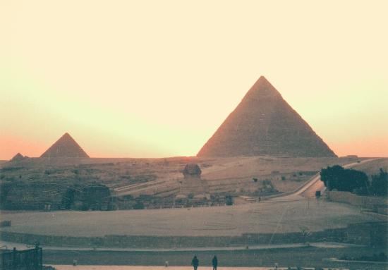 エジプトのしゃべる猫12053
