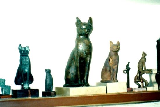 エジプトのしゃべる猫12055