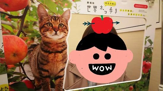 猫の映画12051
