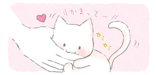 かまってほしくて噛む猫のイラスト