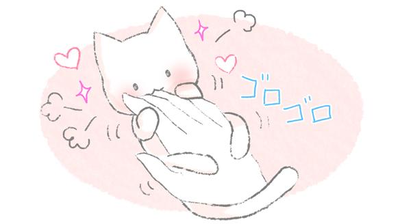 遊んでほしくて噛む猫のイラスト