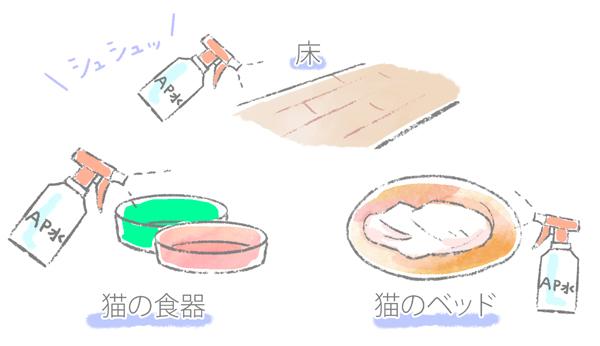 猫の真菌のAP水で消毒する場所のイラスト