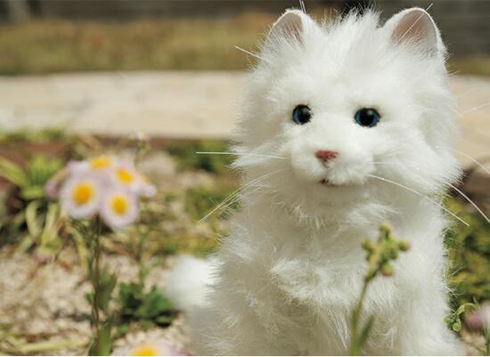 猫ロボット夢ねこプレミアムの画像2