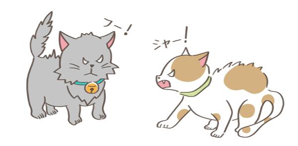 臨戦態勢の2匹の猫のイラスト