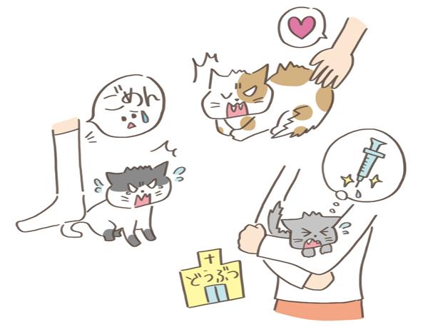嫌なことをされた猫のイラスト