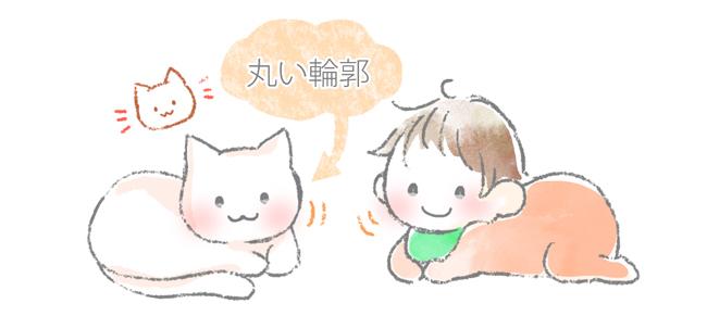 猫がかわいい理由のひとつ、丸い輪郭のイラスト