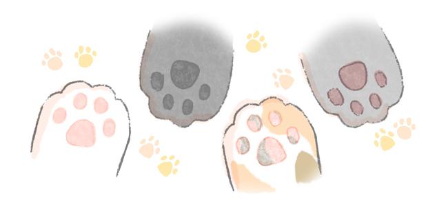 猫のかわいい特徴のひとつ、肉球のイラスト