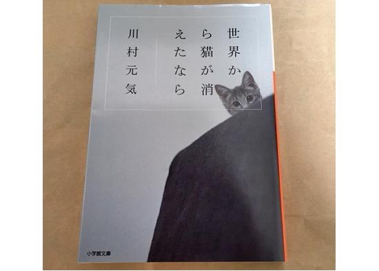 猫の小説ブックカバー写真2