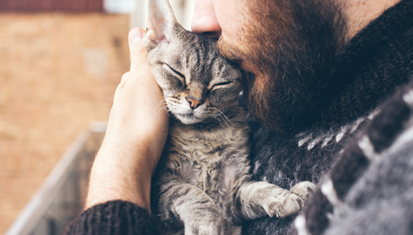 [獣医師コラム]猫の嘔吐。 「危険な吐く」と「大丈 …