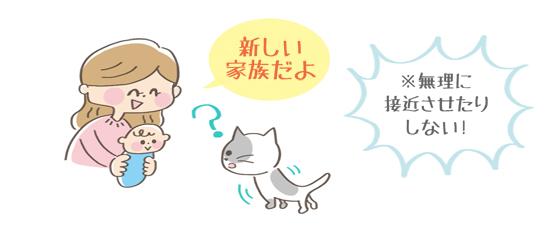 猫と赤ちゃんが初めて会うときのイラスト