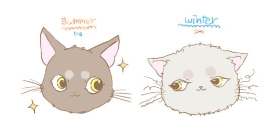 猫のひげのイラスト