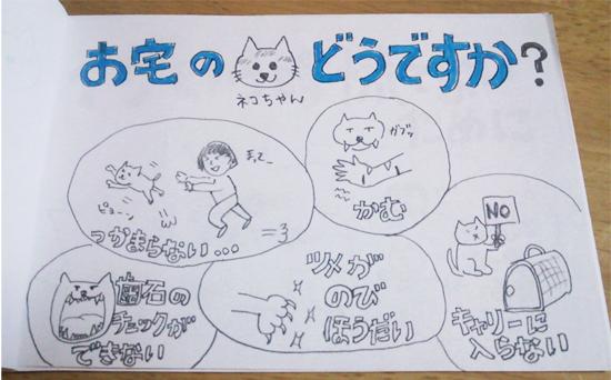 子猫のしつけ画像2