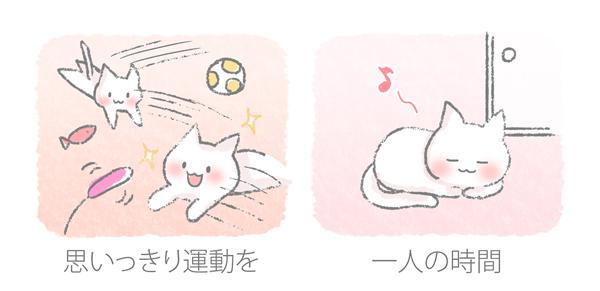 猫のイライラ解消法のイラスト