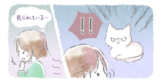 イライラして睨む猫のイラスト