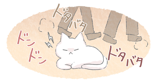 落ち着けない環境にイライラする猫のイラスト