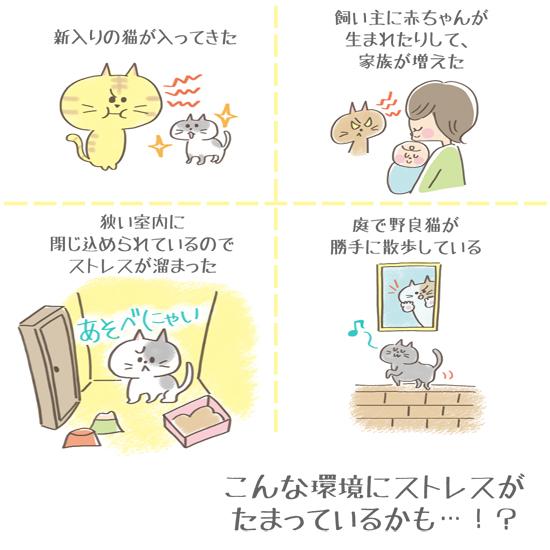 猫の不満イラスト