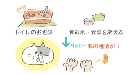 手につく猫の唾液のイラスト