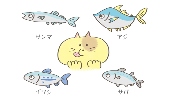 猫に多く与えると駄目な青魚の種類のイラスト