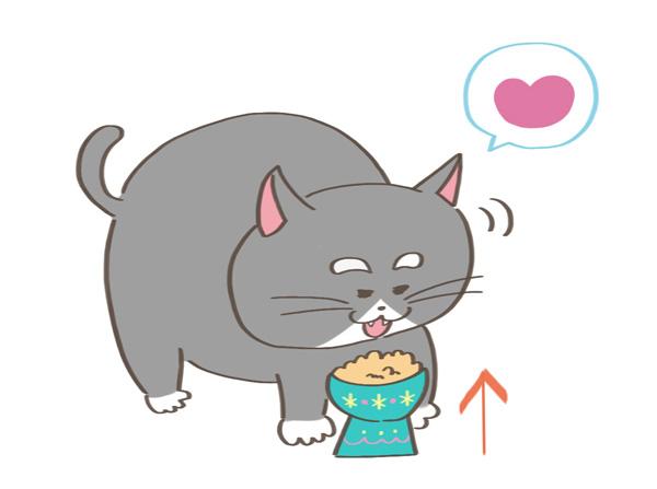 脚高フードボウルで食べる老猫のイラスト