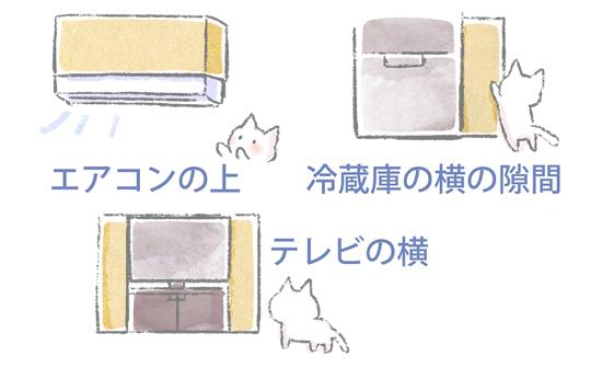 段ボール猫バリケードのイラスト