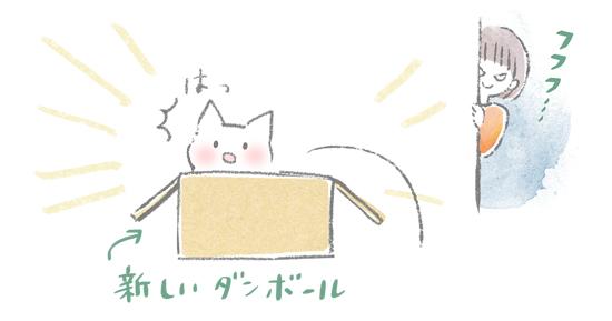段ボール猫捕獲装置のイラスト