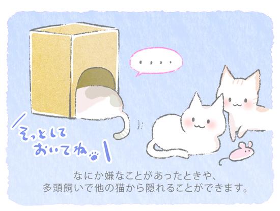段ボール猫セーフハウスのイラスト