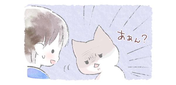 ケンカの合図に目を合わす猫のイラスト