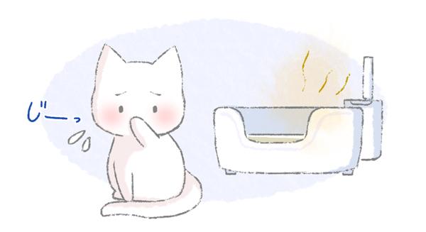 トイレをきれいにしてほしくて目を合わせる猫のイラスト