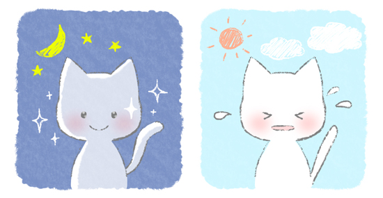 昼と夜の猫の目の見え方をあらわしたイラスト