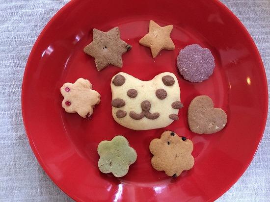 お皿のうえのにゃんこクッキー