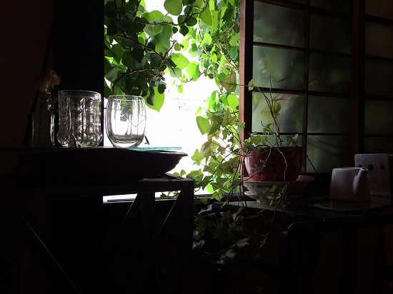 窓のつた写真