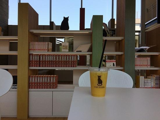 漱石カフェのジュースと棚