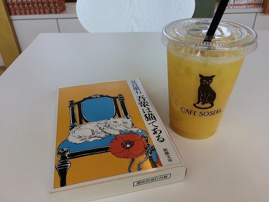 本とオレンジジュース