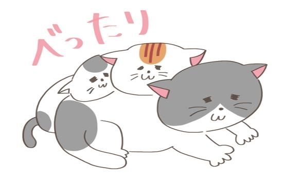 同居猫にあごのせする猫のイラスト