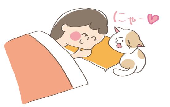 飼い主さんの枕にあごのせする猫のイラスト