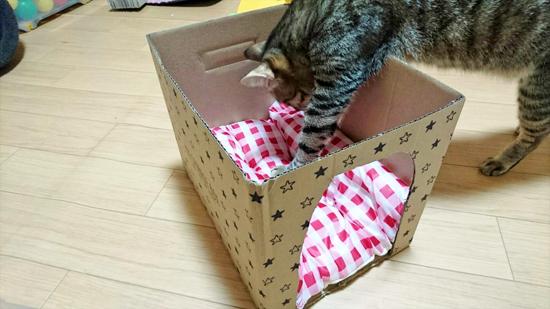 箱でつくる猫用ハウス型ベッドの作り方2