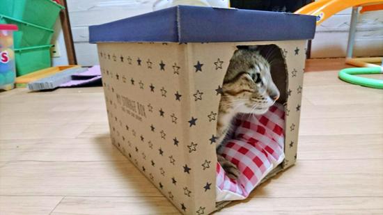 箱でつくる猫用ハウス型ベッドの作り方3