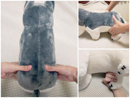 猫の股関節で脈をチェックする方法