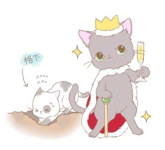 自分の秩序を示す猫イラスト