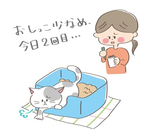 元気がなくて尿や便の事情が気になる猫のイラスト